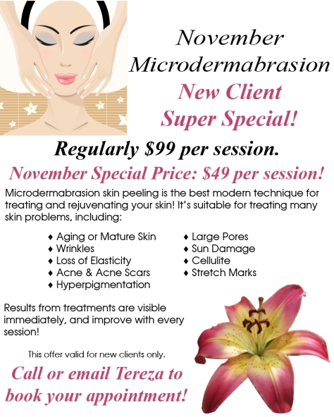Terezas Day Spa Nov 2019 Special V2
